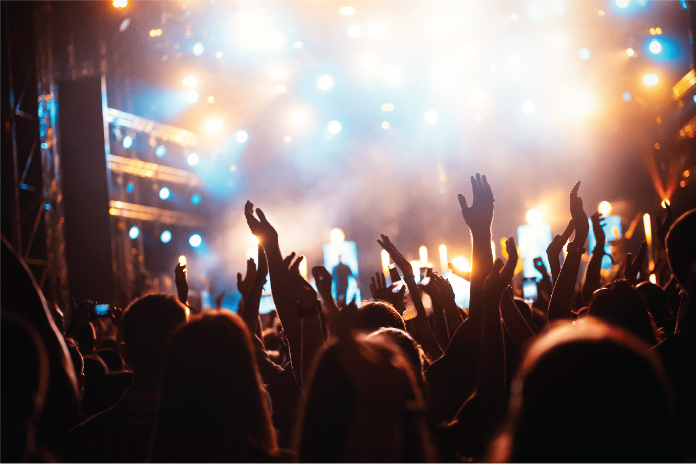 Attendees at a rock concert