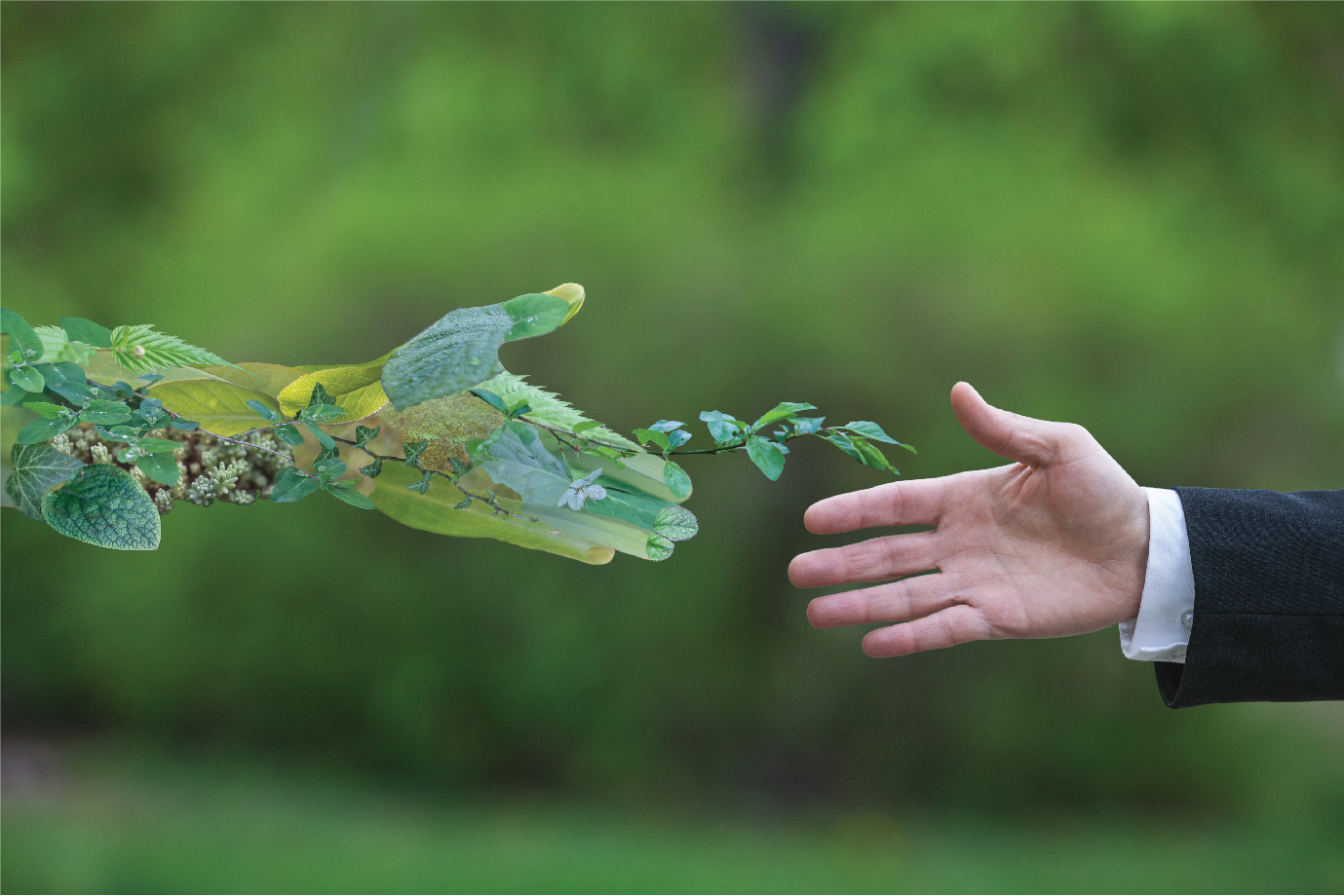 A hand covered in leaves reaching out to shake a human hand