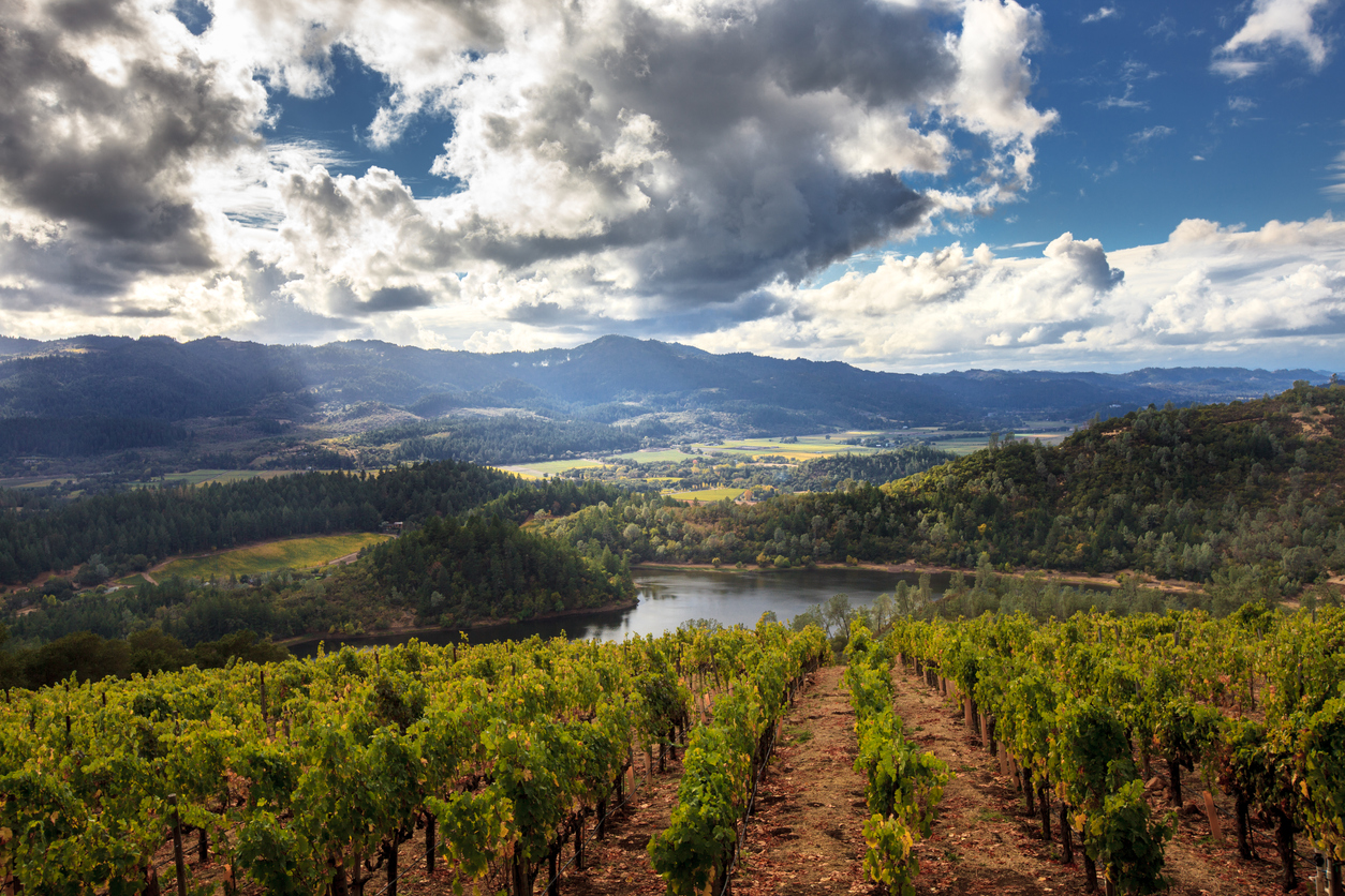 Sonoma County hidden landscapes